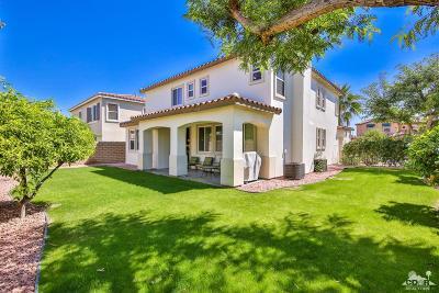 Palm Desert Single Family Home For Sale: 317 Paseo Vista Circle