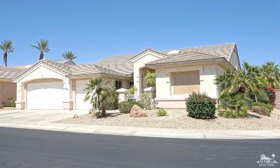 Sun City Single Family Home Contingent: 36374 Royal Sage Court