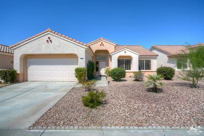 Sun City Single Family Home For Sale: 37417 Mojave Sage Street
