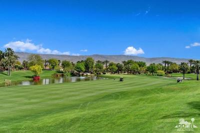 Palm Desert Single Family Home For Sale: 550 Gold Canyon Drive