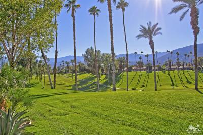Palm Desert Condo/Townhouse For Sale: 301 Tolosa Circle
