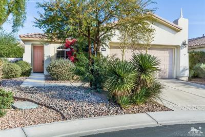 Sun City Shadow Hills Single Family Home Contingent: 41518 Corte Jalisco