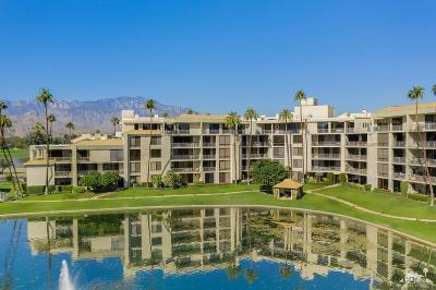 Rancho Mirage Condo/Townhouse Contingent: 910 Island Drive #208