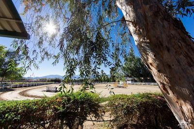 Rancho Mirage Single Family Home For Sale: 35050 Via Josefina