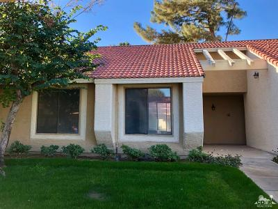 Palm Desert Condo/Townhouse Sold: 43376 Cook Street #218