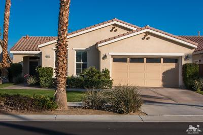 Trilogy Single Family Home For Sale: 60504 Desert Shadows Drive