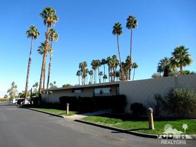Palm Springs Single Family Home For Sale: 137 Desert Lakes Drive