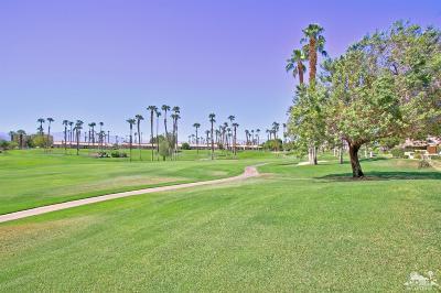 Palm Desert Condo/Townhouse Contingent: 76691 Chrysanthemum Way