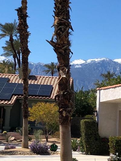 Palm Desert Condo/Townhouse For Sale: 162 Wimbledon Court