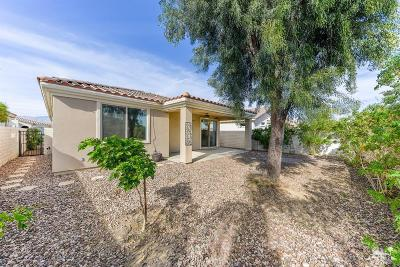 Indio Single Family Home For Sale: 80307 Avenida Linda Vista