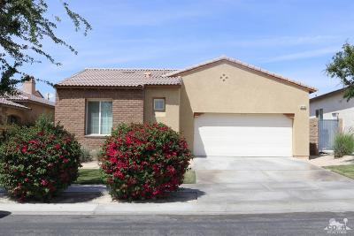 Indio Single Family Home Contingent: 84146 Canzone Drive