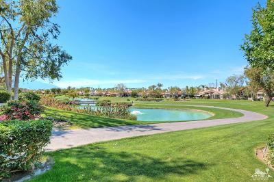Palm Desert Single Family Home For Sale: 937 Box Canyon