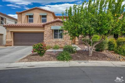 Palm Desert Single Family Home For Sale: 296 Paseo Vista Circle