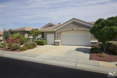Palm Desert Single Family Home Contingent: 78258 Quail Run