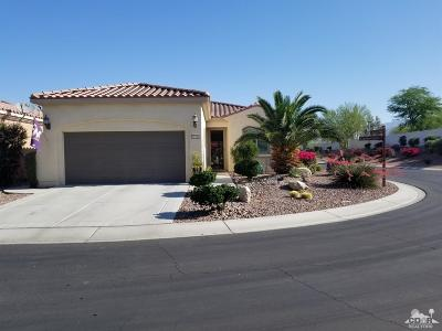 Sun City Shadow Hills Single Family Home Contingent: 81964 Camino Cantos