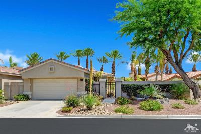 Palm Desert Condo/Townhouse For Sale: 374 Desert Holly Drive