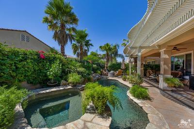 Sun City Shadow Hills Single Family Home Contingent: 41377 Calle Servando