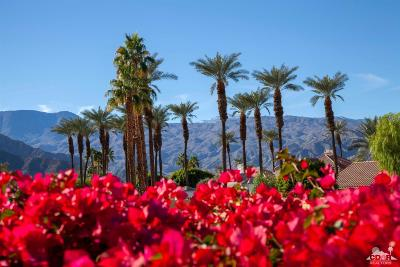 La Quinta Residential Lots & Land For Sale: 78995 Dry Creek Rd Road