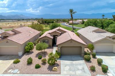 Sun City Single Family Home For Sale: 39341 Peach Blossom Circle