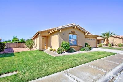 Indio Single Family Home Contingent: 82529 Delano Drive