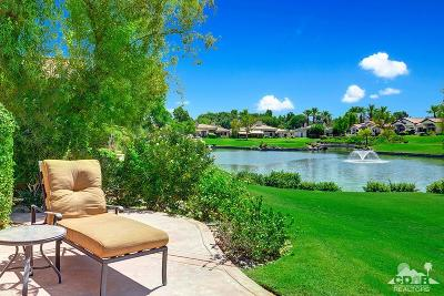 Palm Desert Condo/Townhouse Contingent: 829 Box Canyon Trail