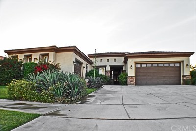 Indio Single Family Home For Sale: 43635 Spiaggia Place