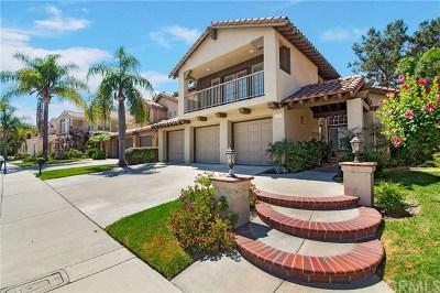 Single Family Home For Sale: 26301 Ibeza Road