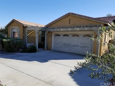 Palm Springs Single Family Home For Sale: 3525 Daybreak Way