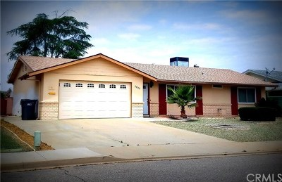 Sun City Single Family Home For Sale: 26256 Fairlane Drive