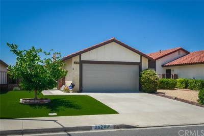 Sun City Single Family Home For Sale: 26209 Goldenwood Street