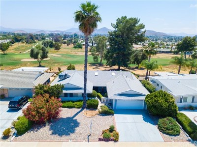 Sun City Single Family Home For Sale: 28430 Portsmouth Drive