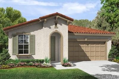 Single Family Home For Sale: 383 Scarlett Runner