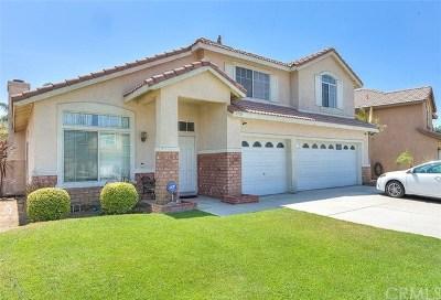 Single Family Home For Sale: 2726 E Blackhorse