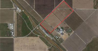 Madera County Farm For Sale: 6 Ave 20 1/2