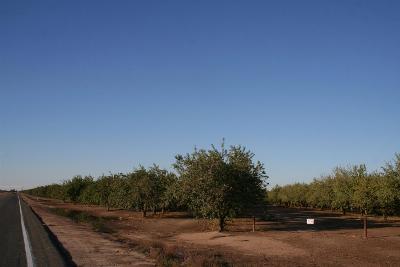 Madera County Farm For Sale: Ave 26 1/2 And Santa Fe