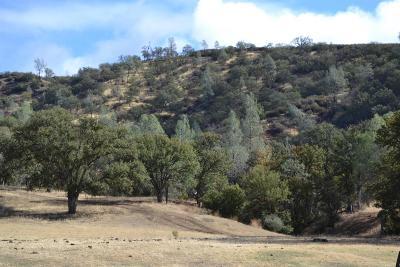 Fresno County Farm For Sale: 20755 Coalinga Rd