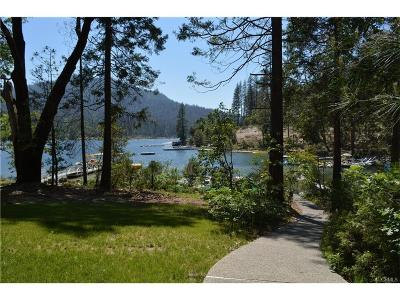 Bass Lake Single Family Home For Sale: 38942 Lake Point Court
