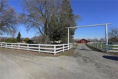 Kings County, Merced County Farm For Sale: 9270 Price Road