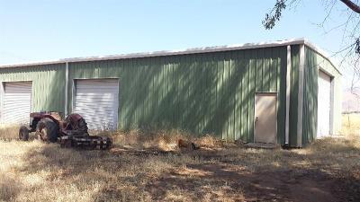 Reedley Farm For Sale: 22780 Edgar Avenue