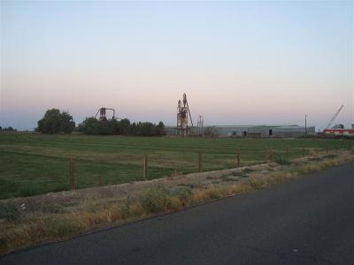 Fresno County Farm For Sale: S Cedar Avenue S