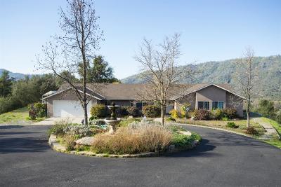 Ahwahnee Single Family Home For Sale: 43180 Knickerbocker Road