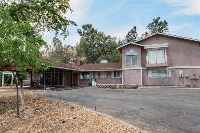Clovis Single Family Home For Sale: 21027 Auberry Road