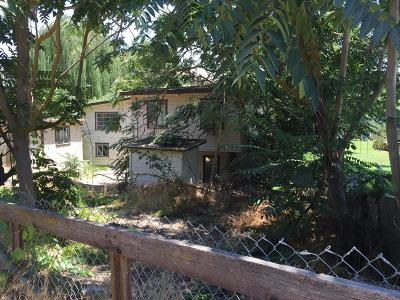 Reedley Single Family Home For Sale: 9202 Kings River Road