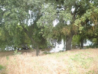 Reedley Residential Lots & Land For Sale: Macdonough/Rd 38