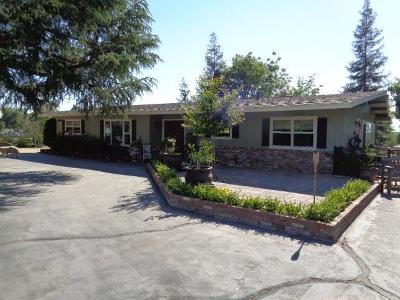 Reedley Single Family Home For Sale: 6839 S Buttonwillow Avenue