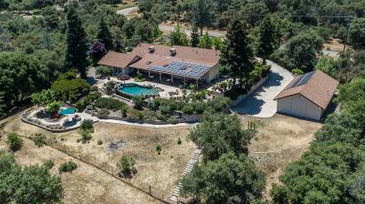 Coarsegold Single Family Home For Sale: 30793 Longview Lane E