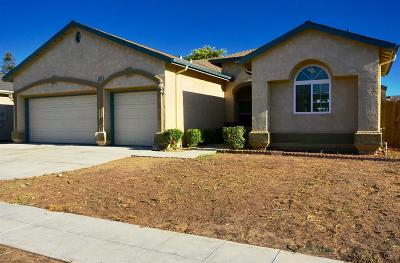 Single Family Home For Sale: 5350 E Burns Avenue