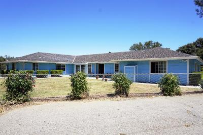 Coarsegold Single Family Home For Sale: 34254 Jennifer Lane