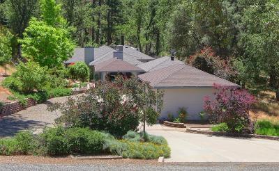 Coarsegold Single Family Home For Sale: 36774 Venado Dr Drive