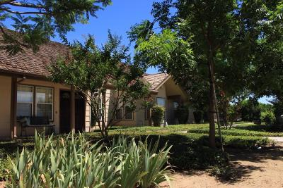 Dinuba Single Family Home For Sale: 42274 Road 114